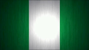 Nigerian Flag_Sourced from Google